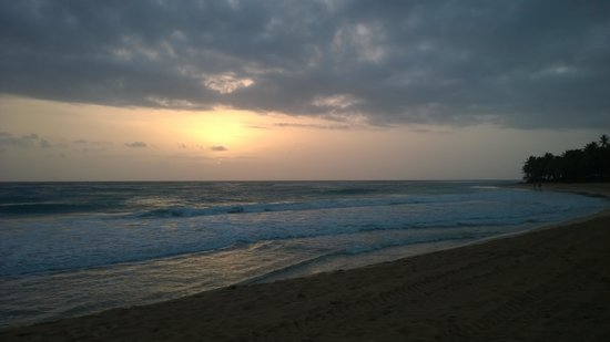 Excellence Punta Cana: Beach north in the AM