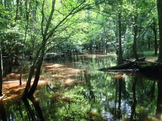 Adventure Carolina: Cedar Creek launch site