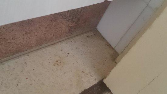 BelleVue Club: cockroach paradise