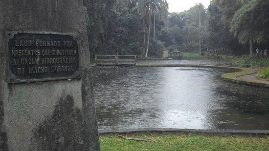 Jardim Botanico de Sao Paulo: A lake formed by the natural springs of the area