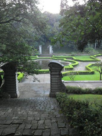Jardim Botanico de Sao Paulo: a very beautiful area inside