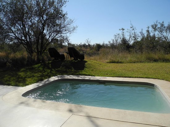 Sabi Sabi Earth Lodge: Your private plunge pool