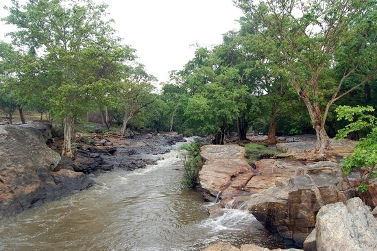 Chinnar Wildlife Sanctuary trekking