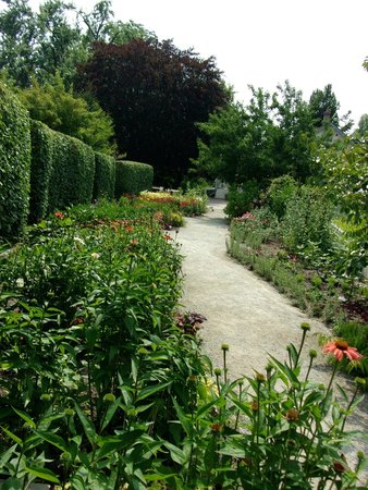 Edwards Gardens : Trails beckon you forward