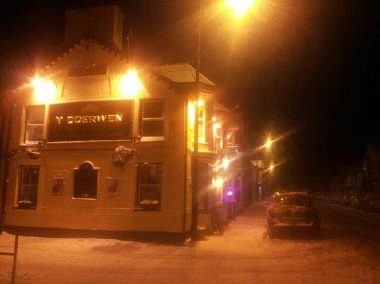 The Oak - Y Dderwen: Winter snow.