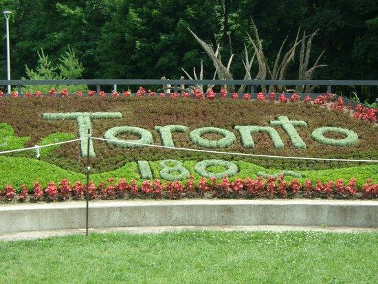 Edwards Gardens: Floral Display