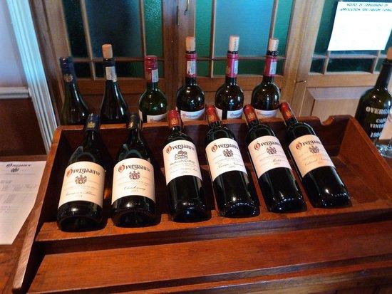 Camino Wine Tours: Overgaauw