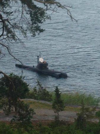 Djuronaset Conference & Hotel: Åk ubåt (ålder: från 14 år i målsmans sällskap, 700:-)