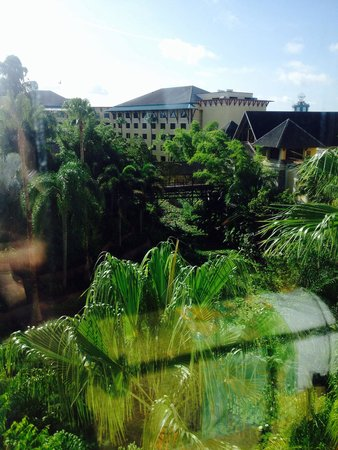 Loews Royal Pacific Resort at Universal Orlando: The tropical view from our room