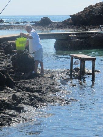 Isla de Lobos: il pescatore che rifornisce il ristorante