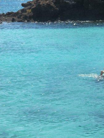 Isla de Lobos: ...mare... di cristallo