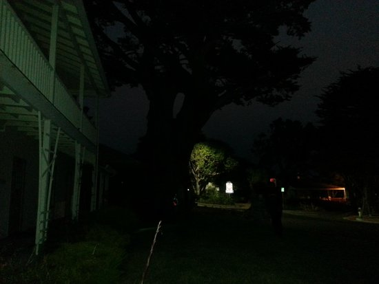 Ghost Tour of Old Monterey : Orbe gone...spooky...