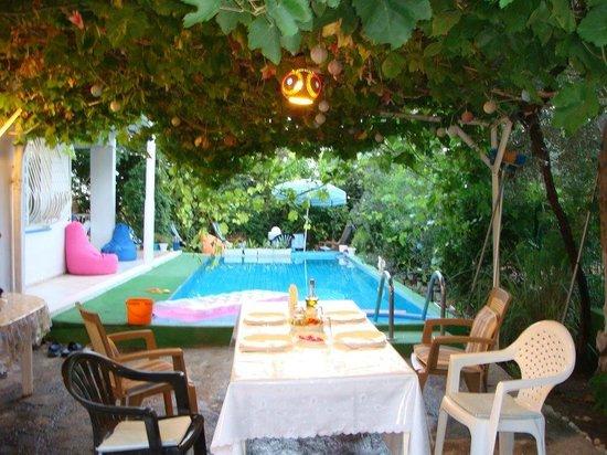 Antalya Farm House : bahçe