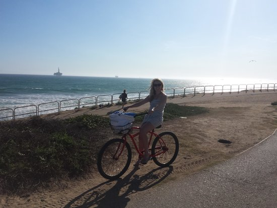 Bargain Bike Rentals