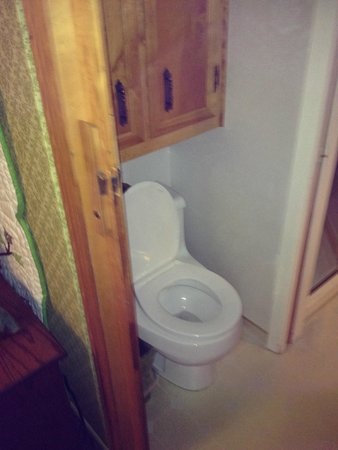 Big Bear Bed & Breakfast : cupboard toilet