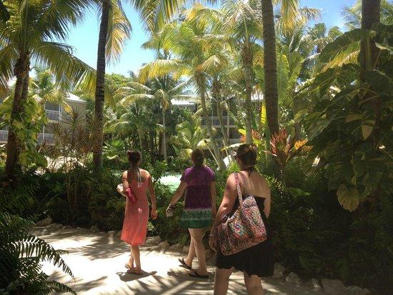 Cheeca Lodge & Spa: Tropical grounds