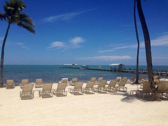 Cheeca Lodge & Spa: sun tanning paradise