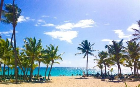 Hotel Riu Palace Punta Cana : The Beach