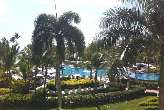 Hotel Riu Palace Punta Cana : pool view