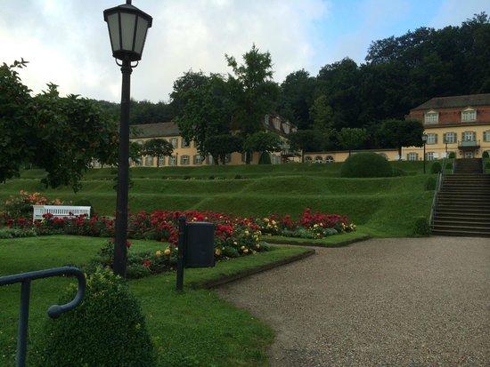Dorint Resort & Spa Bad Bruckenau: Hotelpark
