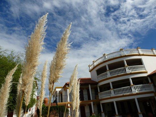 El Cortijo Apart-Hotel & Spa: El Hotel visto desde el parque