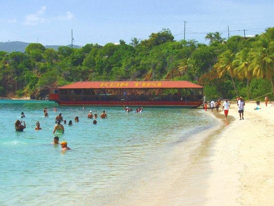 Cruise Ship Excursions Honeymoon Beach Water Island
