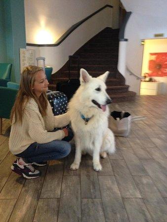 Inter-Hôtel de la Plage : The reception dog