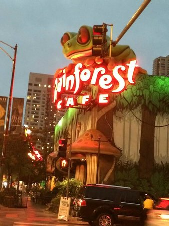 Hyatt Place Chicago / River North: Nearby Rainforest Cafe