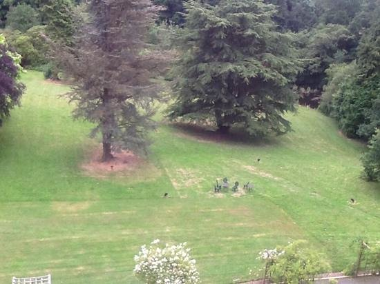 Caer Beris Manor Hotel: part view from the room