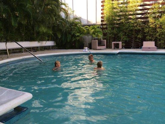 Dorchester Hotel : Pool