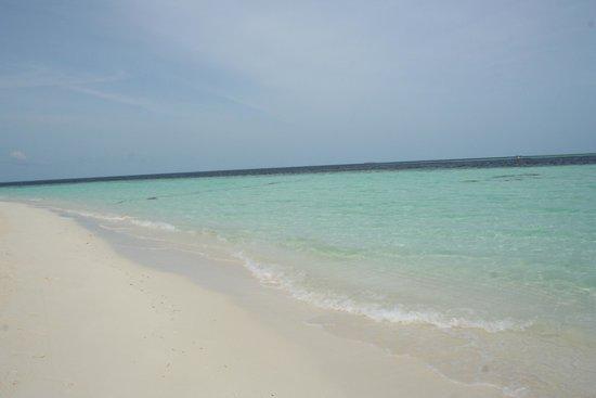 Biyadhoo Island Resort : West beach
