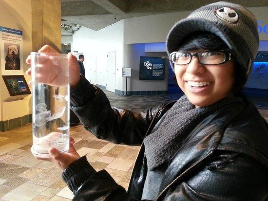 Monterey Bay Aquarium : 13 year old daughter scared to drop a civilization