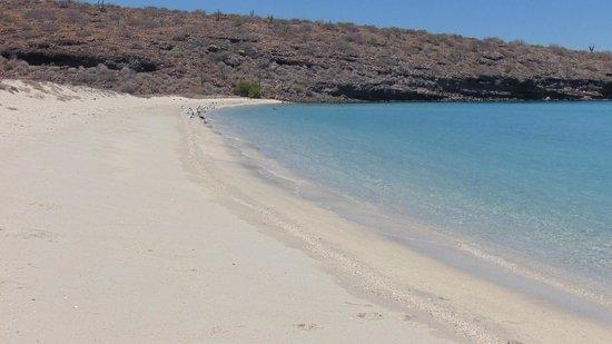 Baja Camp: spiaggia