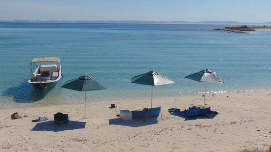 Baja Camp : spiaggia