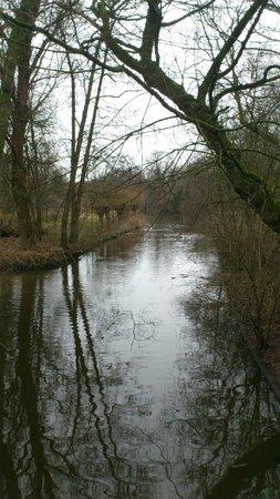 Vondelpark: Canal que se cruza durante o passeio e que atravessa o parque!