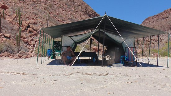 Baja Camp: tenda
