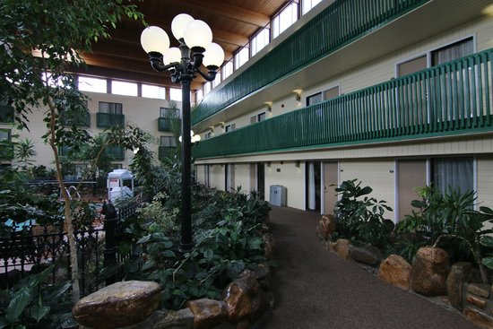 Baymont Inn & Suites Red Deer : love the plants, which are real