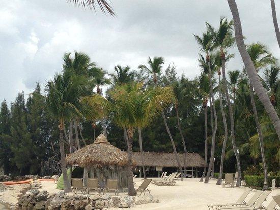 Cheeca Lodge & Spa: Beach