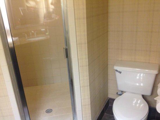 Embassy Suites by Hilton Deerfield Beach - Resort & Spa: Shower toilet