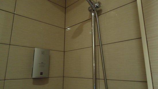 Hotel Restaurant De La Porte Saint-Pierre : The shower