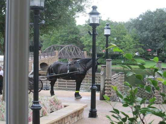 Disney's Port Orleans Resort - Riverside: View from the lobby - carriage rides