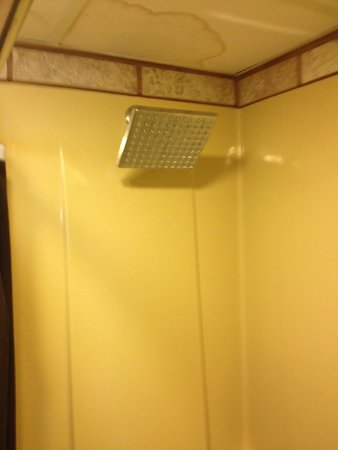 Greystone Inn: shower head