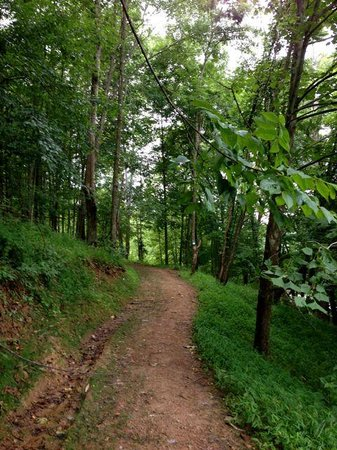 Stonewall Resort: Maple Leaf hiking trail.