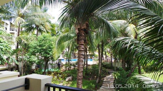 Horizon Karon Beach Resort & Spa: Вид из номера