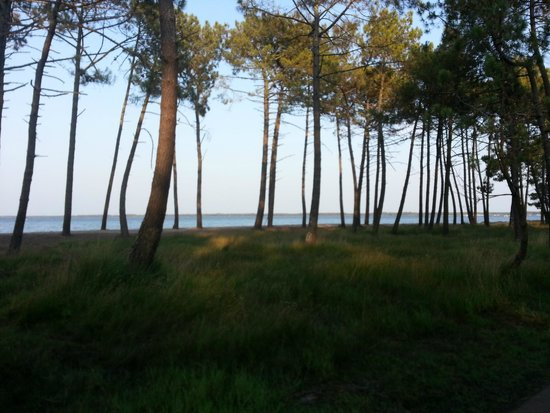 La Forestiere : We ran to the lake daily