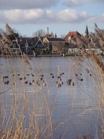 Zaanse Schans : little lake