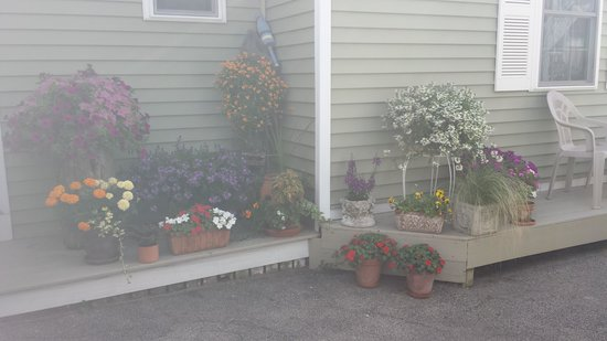 Moontide Motel, Cabins and Apartments : flowers