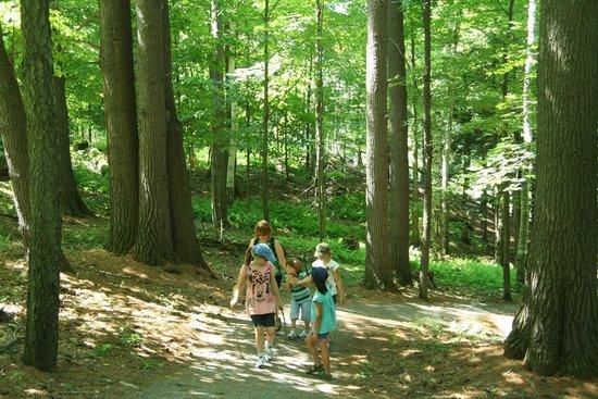 Parc de la Gorge de Coaticook: A walk along the gorge trails