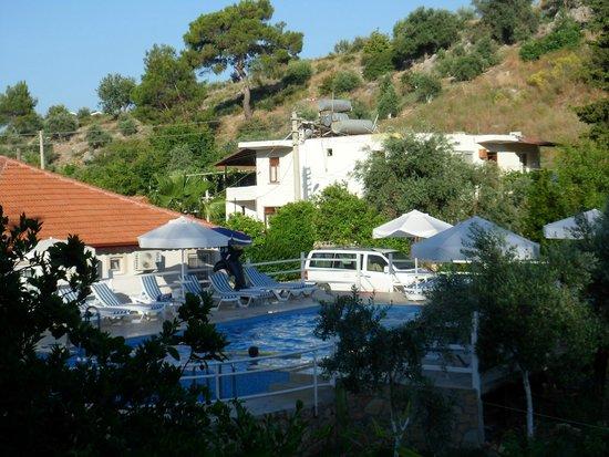 Flower Hotel Pension: Vu sur la piscine