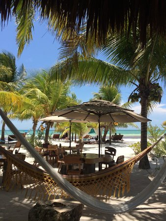 Holbox Hotel Mawimbi: View from the restaurant !